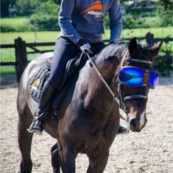 Masque Evysor eQuick Lunette protection UV cheval - Mon Cheval