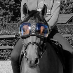 Lentilles de remplacement pour masque lunettes Evysor cheval eQuick - Mon Cheval