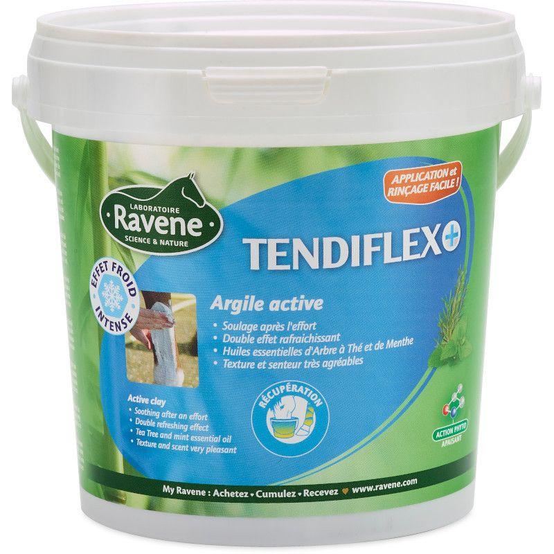 Tendiflex chevaux Ravene