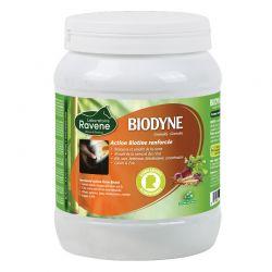 Biodyne chevaux Ravene