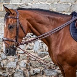 Rênes allemandes cheval...