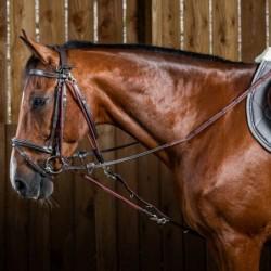 Gogue cheval Dyon corde...