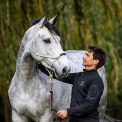 Licol éthologique cheval...