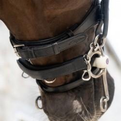 Protège gourmette cheval...