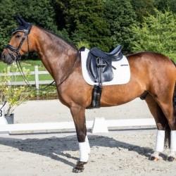 Tapis cheval Dyon Dressage...