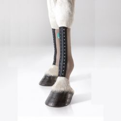 CHAUSSETTES CHEVAL FIT SILVER COMPRESSION EQUICROWN