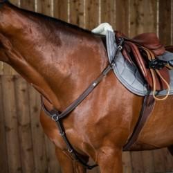 Collier de chasse cheval...