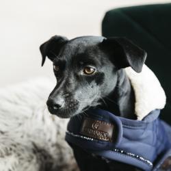Manteau pour chien matelassé Pearls - Kentucky