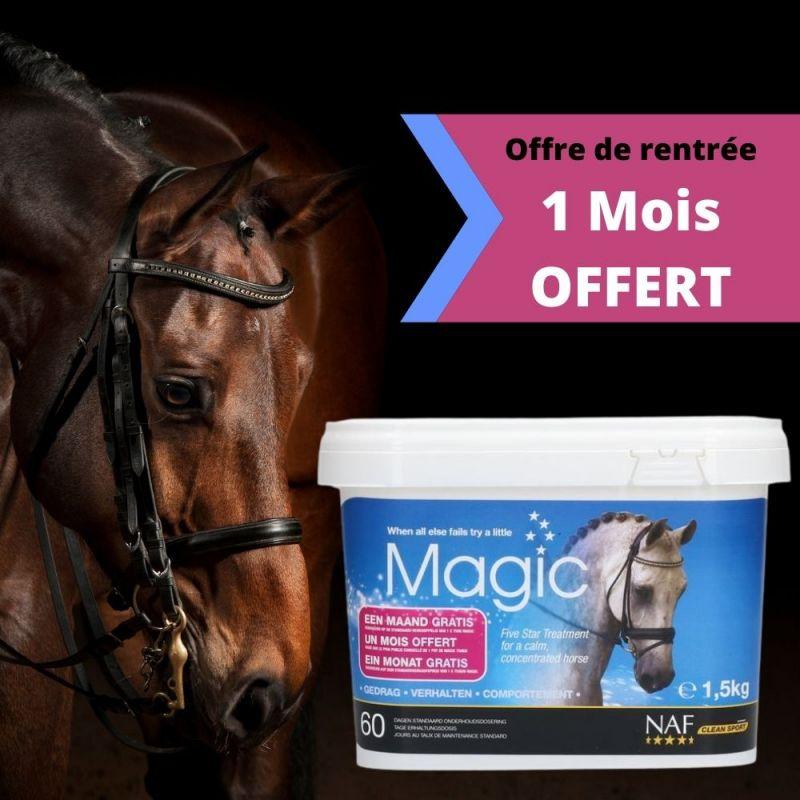 Magic 5 Star chevaux Naf