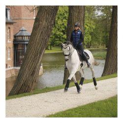 Polo Bandages bandes de polo extra larges chevaux par 4 Kentucky