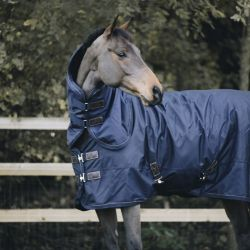 Turnout Rug All Weather 300g couverture extérieur chevaux Kentucky