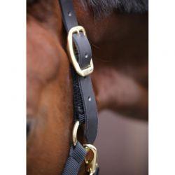 Control Halter licol contrôle en nylon chevaux Kentucky