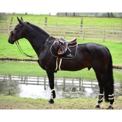 Sheepskin Leather Tendon Boots Elastic guêtres en similicuir et mouton avec boutons chevaux Kentucky