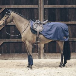 Riding Rug All Weather couvre-reins imperméable doublé chevaux Kentucky