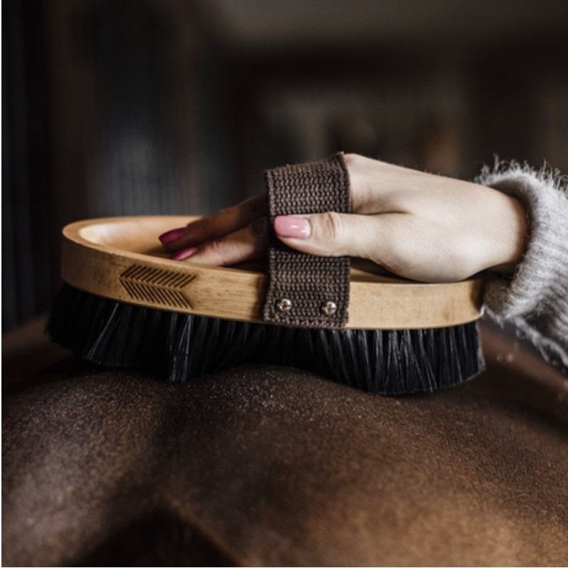 Brosse Grooming Deluxe douce à poils durs chevaux Kentucky