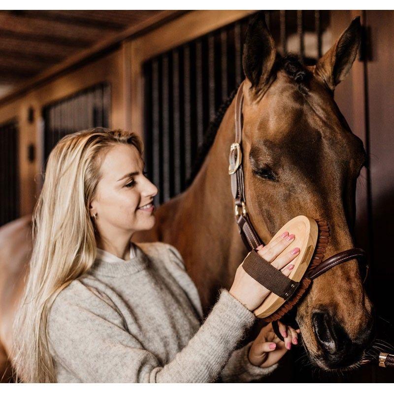 Brosse Grooming Deluxe douce à poils doux chevaux Kentucky