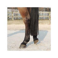 Protège-paturons chevaux par 2 Kentucky