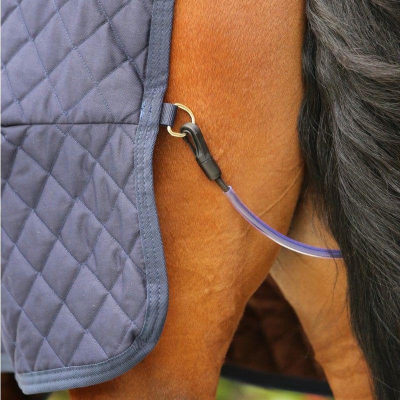 Tail Cord courroie de queue élastique chevaux Kentucky