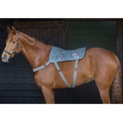 Tapis de massage 3 intensités cheval Equilibrium
