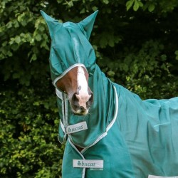 Masque cheval anti mouche...