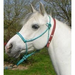 Collier anti-mouche cheval - Mon Cheval